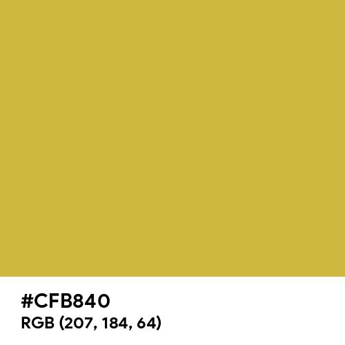 Gold CMYK (Hex code: CFB840) Thumbnail