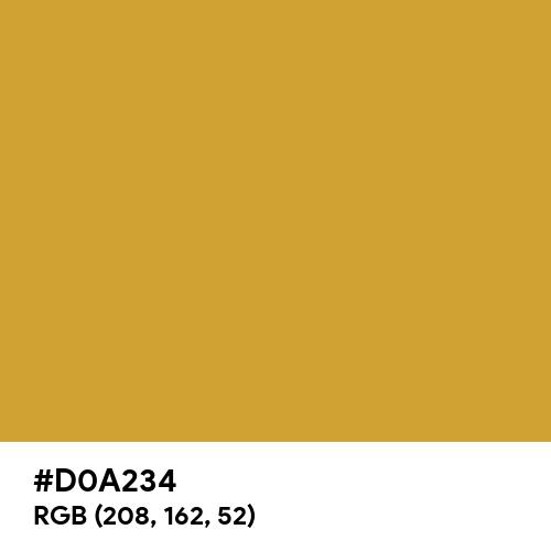 Bronze CMYK (Hex code: D0A234) Thumbnail