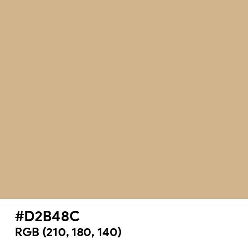 Tan (Hex code: D2B48C) Thumbnail