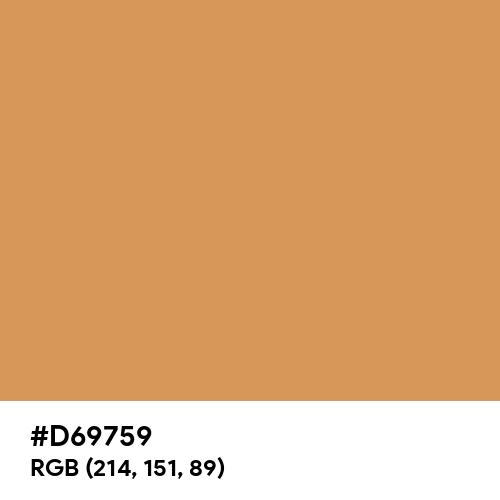 Pastel Ochre (Hex code: D69759) Thumbnail