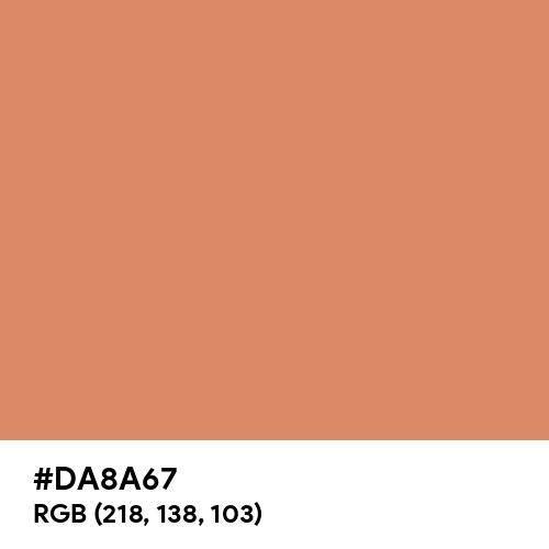 Pale Copper (Hex code: DA8A67) Thumbnail
