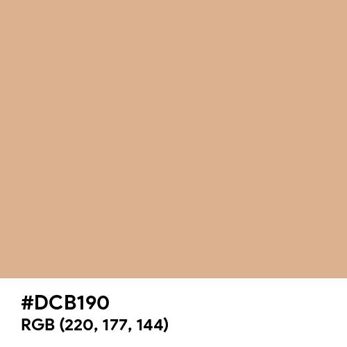 Bright Brown (Hex code: DCB190) Thumbnail