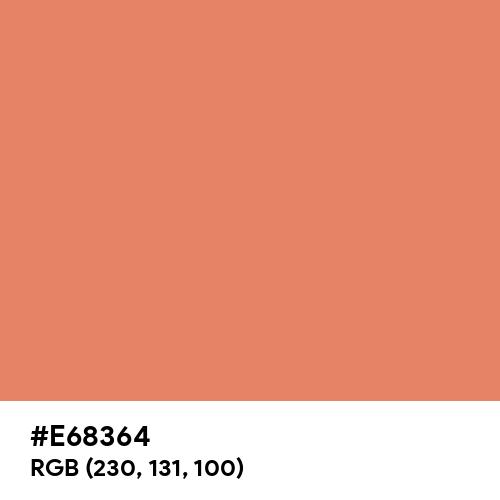 ときがら茶 (Tokigaracha) (Hex code: E68364) Thumbnail