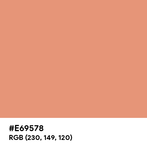 Dark Salmon (Hex code: E69578) Thumbnail
