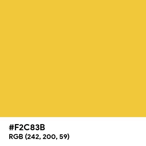 Best Gold (Hex code: F2C83B) Thumbnail