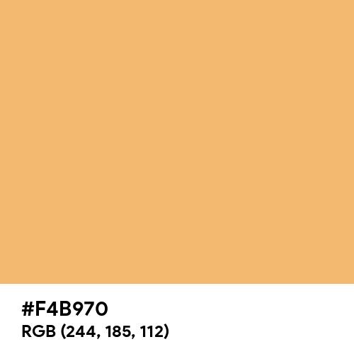 Refresh Orange (Hex code: F4B970) Thumbnail