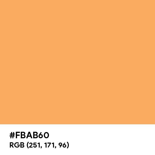 Rajah (Hex code: FBAB60) Thumbnail