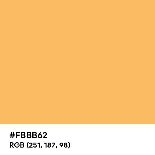 Pastel Orange (Hex code: FBBB62) Thumbnail