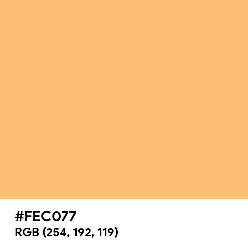 Topaz (Hex code: FEC077) Thumbnail