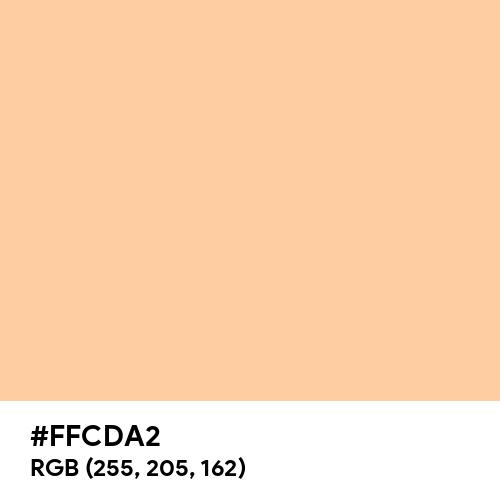 Bright Peach (Hex code: FFCDA2) Thumbnail