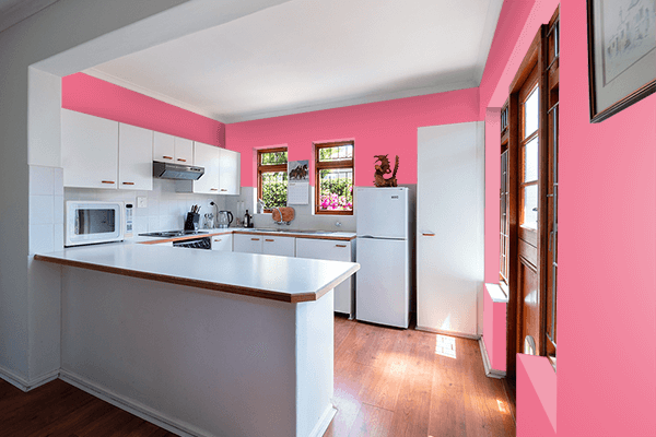 Pretty Photo frame on Pink Lemonade color kitchen interior wall color