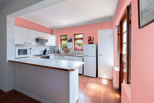 Pretty Photo frame on Salmon Pink Red color kitchen interior wall color