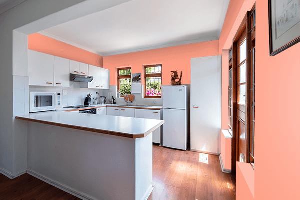 Pretty Photo frame on Bright Salmon color kitchen interior wall color