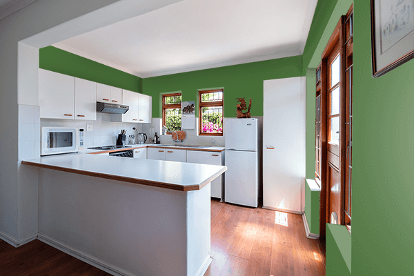 Pretty Photo frame on Grass Green color kitchen interior wall color