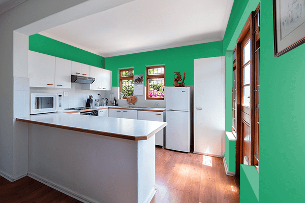 Pretty Photo frame on Irish Green color kitchen interior wall color