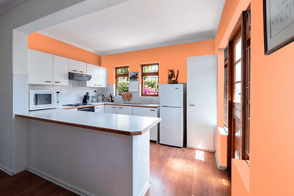 Pretty Photo frame on Atomic Tangerine color kitchen interior wall color