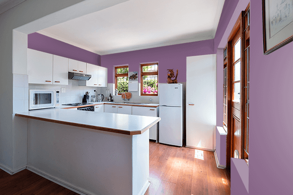 Pretty Photo frame on Red Lilac (RAL) color kitchen interior wall color