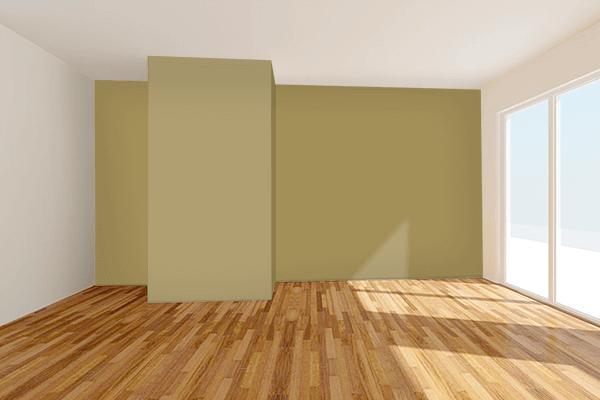 Pretty Photo frame on Police Khaki color Living room wal color
