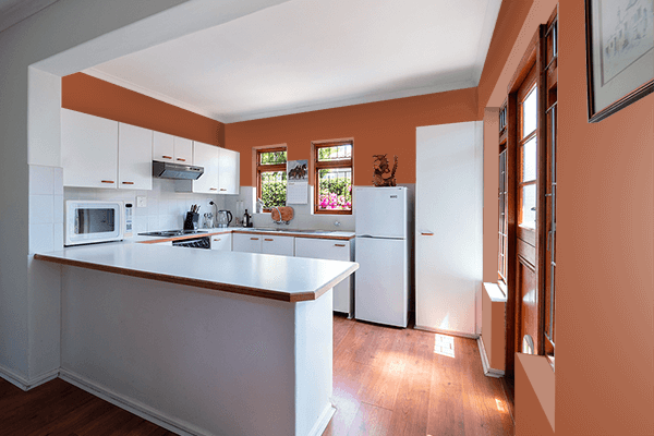 Pretty Photo frame on 代赭色 (Taisha-iro) color kitchen interior wall color