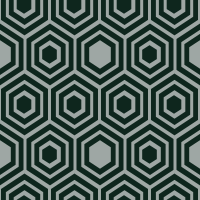 honeycomb-pattern - 0E261D