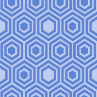 honeycomb-pattern - 5E84D3