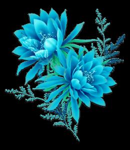 Blue flowers bunch