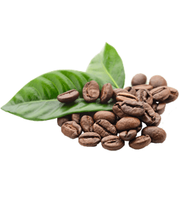 Brown coffee beans and green leaves