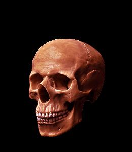 Dead Head Red Skull