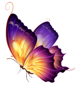 Purple and gold butterfly