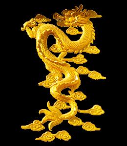 Golden Chinese dragon illustration