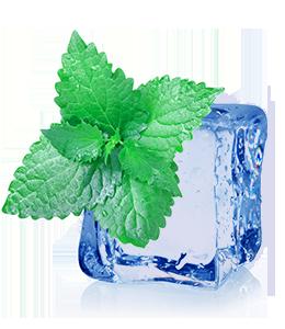 Green mint leaf on ice