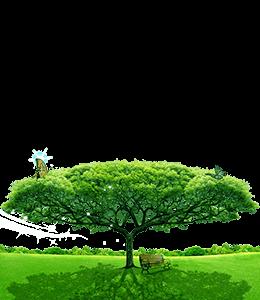 Green natural landscape