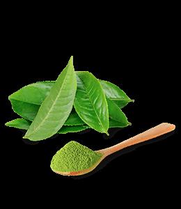Green tea leaves powder