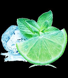 Ice cube, mint leaves and lemon slice