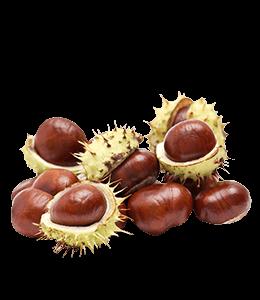 Peeled chestnut