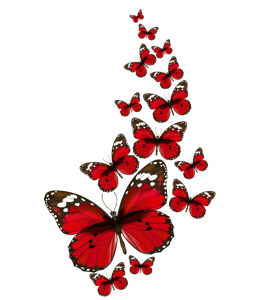 Red colored butterflies