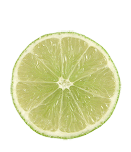 Slice of small lime