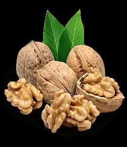 Walnut Dried Fruit