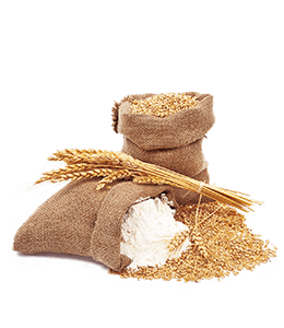 Wheat and Flour for Bread